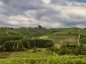 Rarità sorprendono: Rossese bianco Malvasia moscata