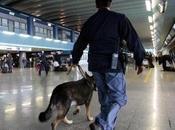 Controlli anti-terrorismo Capodichino: arrestati sospetti