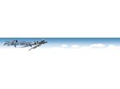 FlightGear realistico simulatore volo Linux, mai.