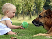 """deciso! Prenderò cane"""" campagna l'adozione l'acquisto consapevoli"""