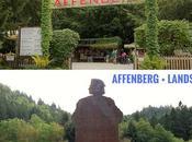 Viaggio Carinzia: visitare Affenberg Burg Landskron