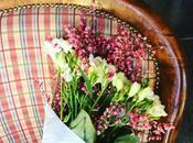 fiori Nico Fresie Ginestra*