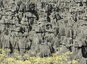 Madagascar parco dell'Ankarana
