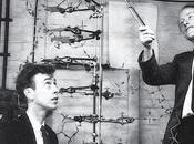 febbraio 1953 scoperta della struttura DNA, grande passo scienza