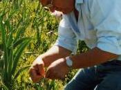 Giardino delle Iris Trebecco: l'eredità botanica Luigi Mostosi alla figlia Cristina