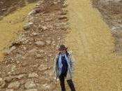 strada dell'Imperatore, scoperto tratto romana Israele