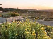 Bretagna: soggiorno eco-sostenibile alla Grée Landes