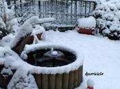 mini pond l'inverno