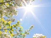 Benvenuta primavera! Primo colloquio gratuito marzo
