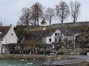 Svizzera: curiosità Rapperswill, città delle rose