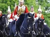 William Kate: royal wedding media ecologia