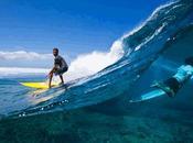 Fare Surf Fiji stato cosi' facile