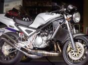 Yamaha R1-Z Gesundheit