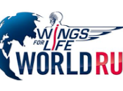 Wings Life World 2017