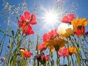 Poesia primavera inizia