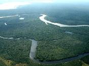 Rete ecclesiale Pan-Amazzonica: diritto territorio/Non solo Africa