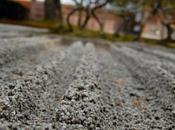 Giappone: otto posti sfuggire alla folla