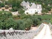 """muretti secco della Puglia Patrimoni Unesco"""": l'Italia presenta candidatura"""