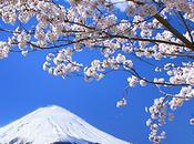 Primavera Giappone, Will Ferguson