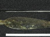 tesoro preistorico Carnoustie