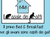 B&B Casale Gatti: struttura miciosa d'Italia