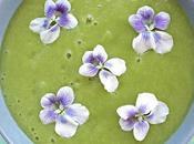 Vellutata asparagi violette