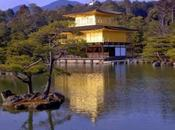 Libri parlano Kyoto