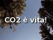 biossido carbonio, della vita