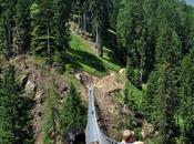 Parco Nazionale dello Stelvio: escursioni ponti sospesi