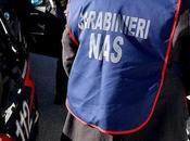 """Blitz Nas, sequestrate 28mila uova Campania: """"Pericolose salute"""""""