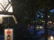 Giappone: viaggio intercontinentale