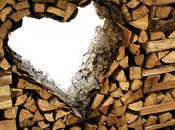 Come costruire legnaia