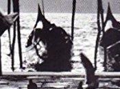 Hemingway Lignano Sabbiadoro. dono incontro