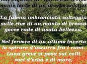 "canti versi"" Ilaria Biondi. Recensione Tiziana Viganò"