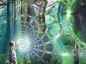 risonanza morfica biologia quantistica