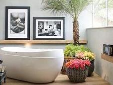 [Passione Casa] Piante fiori casa sana rilassante