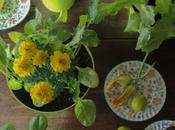 davanzale piatto: insalata fiori