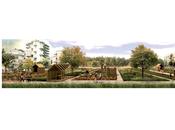 Rino pruiti: nuovi orti urbani #buccinasco