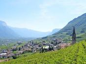 pista ciclabile dell'Adige della Strada Vino: bici Egna, Termeno Cortaccia