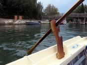 Scoprire laguna Venezia barca, vogando alla veneta