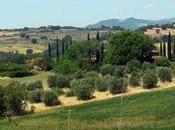 Toscana: ricordi valzer delle tagliatelle
