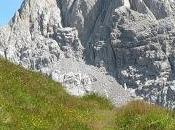 benefici camminata montagna