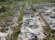 Archeologia. Solchi paralleli nella roccia. Segni passaggio carri agricoli slitte? Riflessioni Franco Sarbia