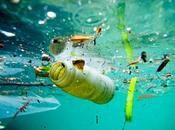 Plastica mare: silenzioso inquinante killer