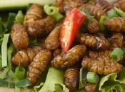 Commercio, svolta supermercati Svizzeri: vendono insetti