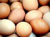 Uova contaminate: anche Sardegna attenzione all'etichetta degli alimenti BlogoSocial