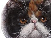 Gatti dipinti sasso Jasmine Tanya