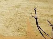 Canto della pianura Crepuscolo (Haruf)