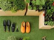 Come fare orto terrazzo
