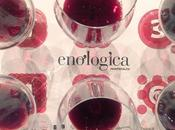 Enologica Montefalco, anni DOCG